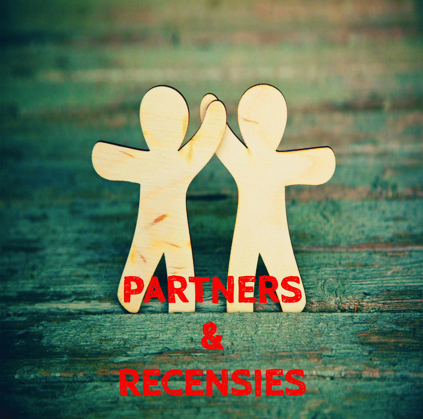 PARTNERS__RECENSIES
